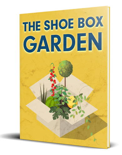 The Shoe Box Garden