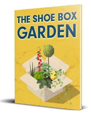 Show Box Garden