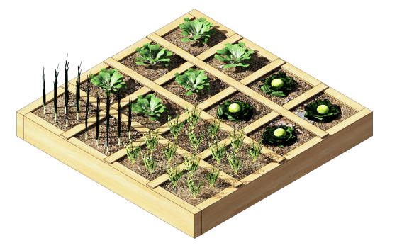 The Adaptable 'Square Foot Garden'